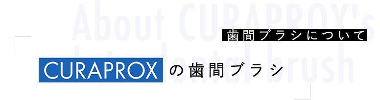About CURAPROX's Interdental brush 歯間ブラシについてCURAPROXの歯間ブラシ