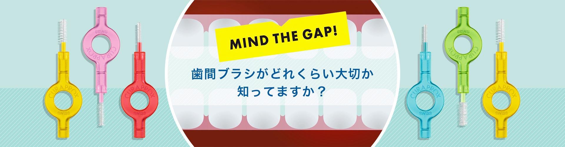 歯間ブラシ特集 歯間ブラシがどれくらい大切か知っていますか?