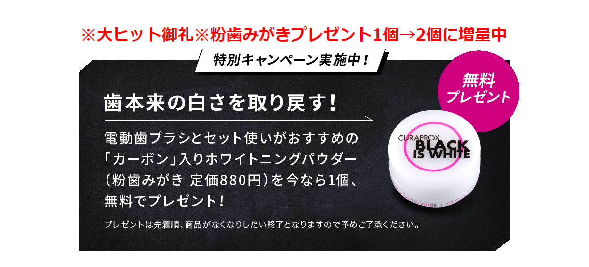 新発売記念キャンペーン 予約販売限定 定価880円の粉歯みがき1個プレゼント