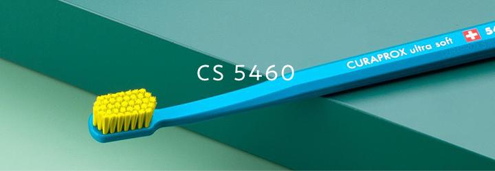 CS 5460